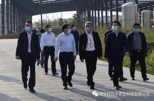 天门市委副书记杨兴铭莅临视察指导工作